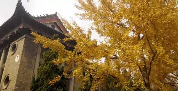 河南15所大学校园秋景PK,你认为哪个拍的最美图片
