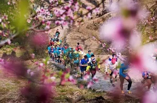 宁波桃花马拉松浪漫来袭!即将迎来中国最美的春天